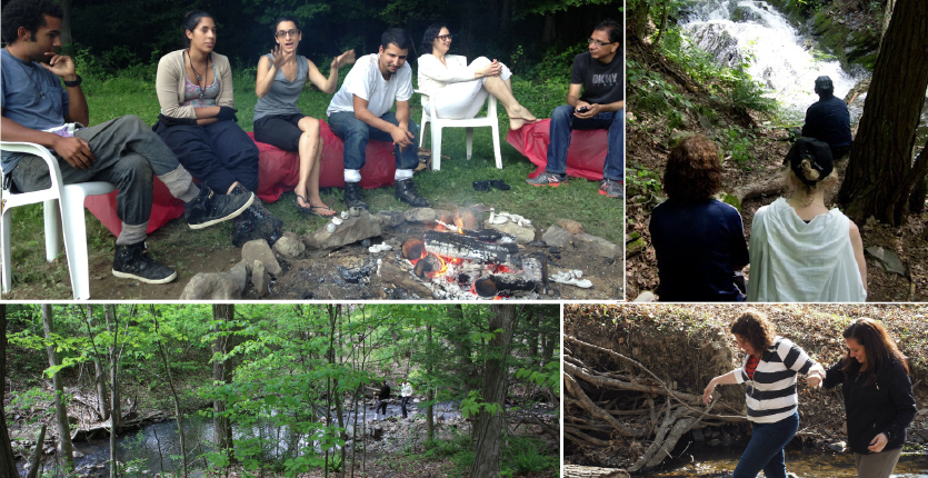 collage 2 campfire, stream forest